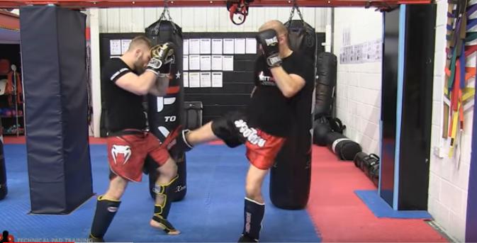 Muay-thai-MMA-shin-guards